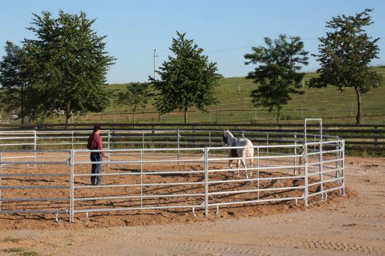 Kruhová jízdárna pro koně