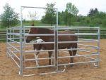 Ohradní panely na mobilní ohrady pro koně