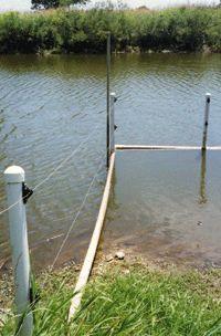 elektrický ohradník pro vodní drůbež