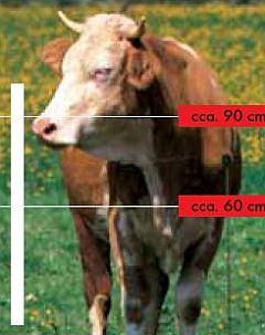 elektrické ohradníky pro krávy