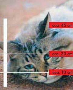 elektrické ohradníky pro kočky