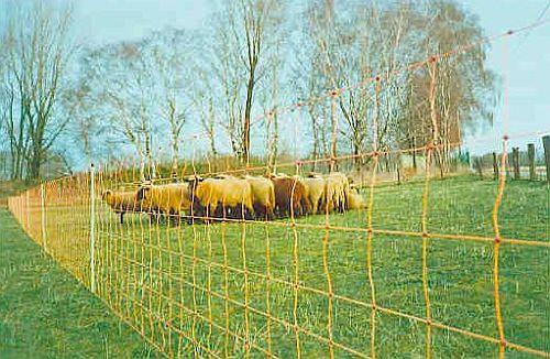 elektrické ohradníky pro ovce s ovčí sítí