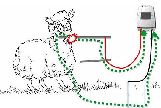elektrické ohradníky pro ovce - fungování
